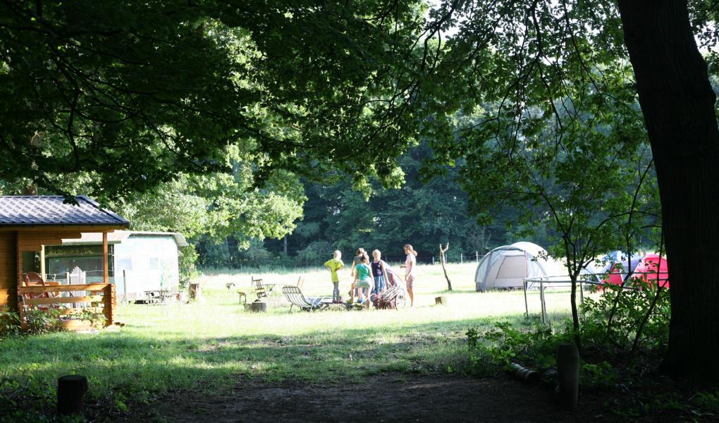 Abends werden Stöcker aus dem Wald gesammelt für das Lagerfeuer